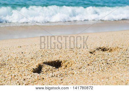 Footsteps on the sand beach, sea on background, seashore