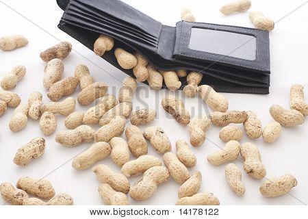 Paid Peanuts