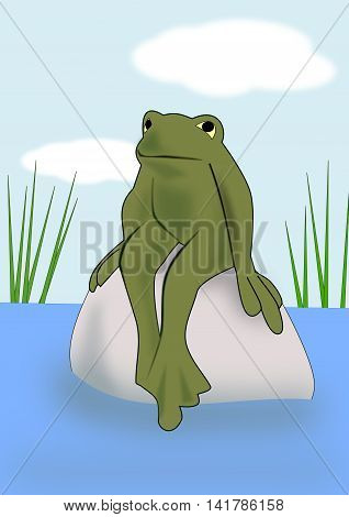 A frog sitting on a rock in a pond.