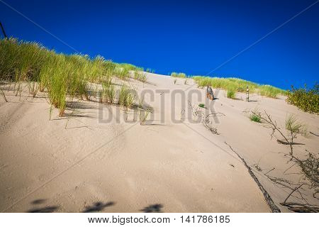 The dunes of the Slowinski national park in Poland
