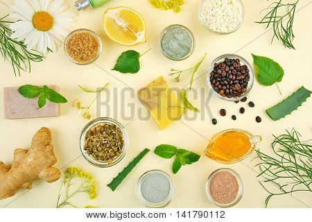 Natural ingredients for skin care on light background