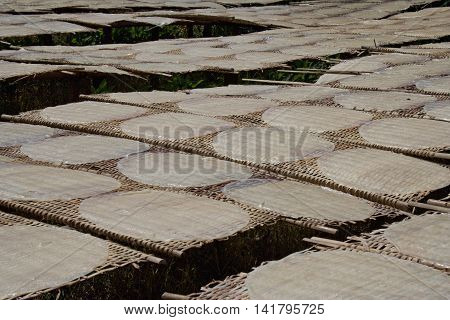 Rice pancakes drying on the sun in the rice noodles factory Can Tho (Mekong Delta) South Vietnam.