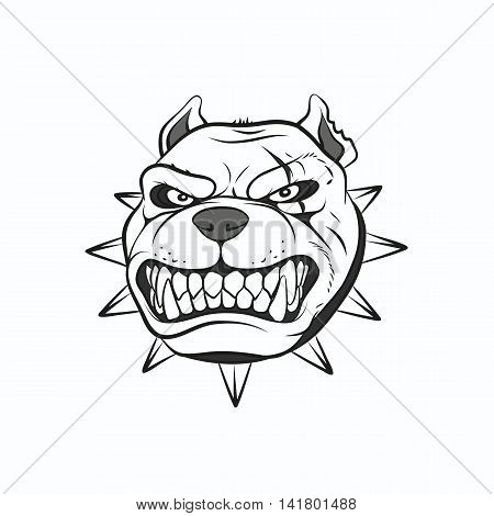 Vector illustration angry pitbull on a white background