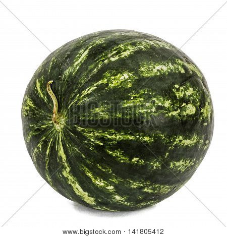 Big striped watermelon isolated on white background