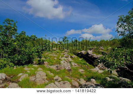 lan Hin Taek at Phu Hin Rong Kla national park in ThailandStone Park View Point