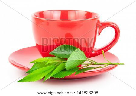 Red Cup of tea with leaves
