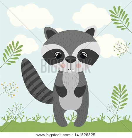 raccoon cute wildlife icon vector isolated graphic