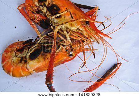 Shrimp on white background, grilled shrimp ready to eat