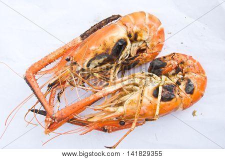grilled prawns on white isolate on white