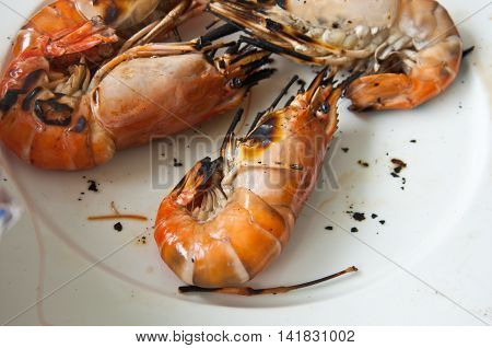 Shrimp on white background, ready to eat