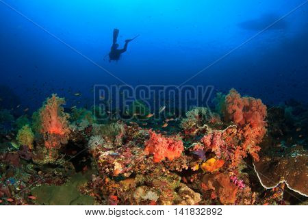 Scuba dive coral reef and dive boat
