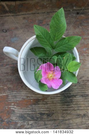 rosehip flower in a Cup on wooden table
