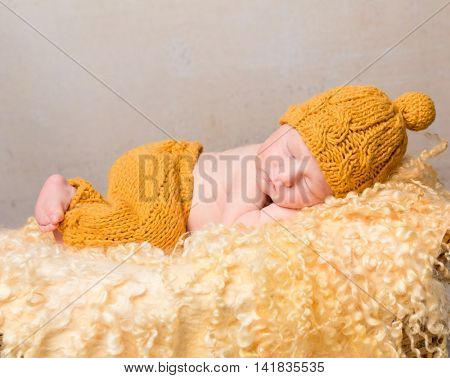 beautiful newborn baby lying on woolen blanket in wicker basket