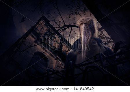 Lesser adjutant stork bird with old fence over grunge castle dead tree bird fly moon and cloudy sky Spooky background Halloween concept