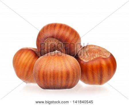 Ripe filberts isolated on white background close-up