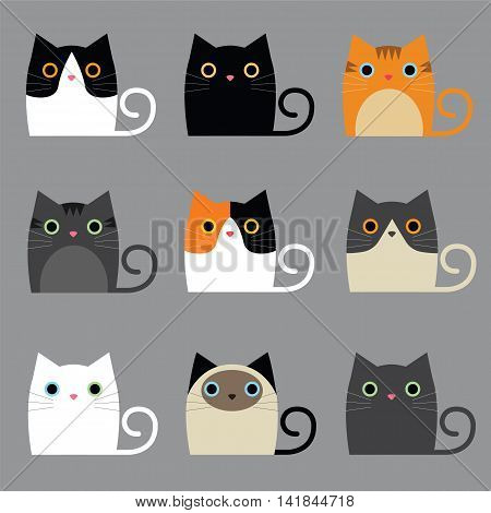 Illustations Set of various cute cats vector