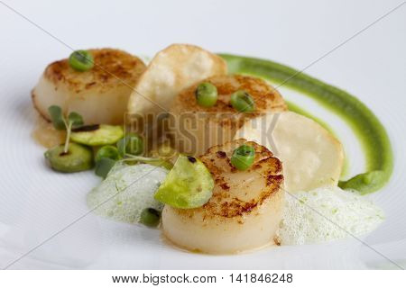 Fried scallops with beans and sauces on white plate