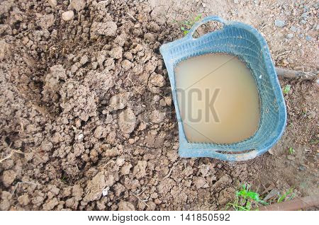 clam-shell shaped basket in ground, top vie