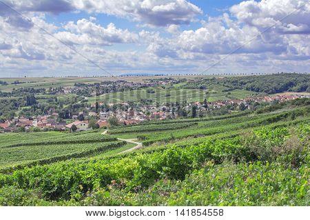 Wine Village of Jugenheim in Wine region of Rheinhessen in Rhineland-Palatinate,Germany