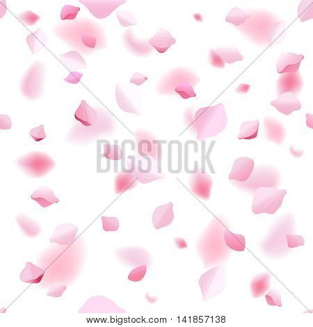 Spring abstract vector background with sakura cherry petals. Flower blossom petal blooming illustration