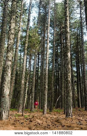 Young unrecognized teenage adult dressed in red and walking in the forest of pine trees. Troodos mountains Cyprus.