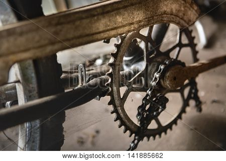 Sprocked, Details Of Old Bicycle