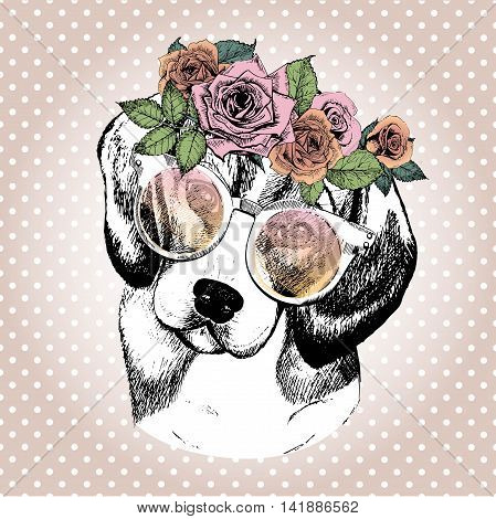 Vecotr portrait of dog wearing the floral wreath and sunglasses. Hand drawn vintage trendy illustration. Beagle breed. Isolated on polka dot and rose gold background.