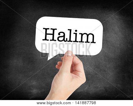 Halim written in a speechbubble