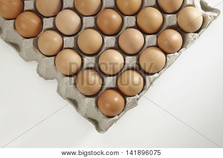tray of the chicken egg on the white background