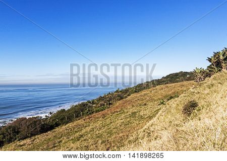 Dune Vegetation And Distand Ocean And Blue Coastal Skyline