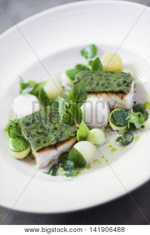 gourmet grilled fish with herb crust and boiled vegetables in cream sauce