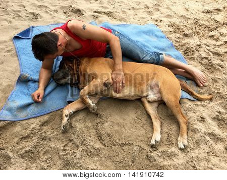 Great friendship between a man and his south african mastiff