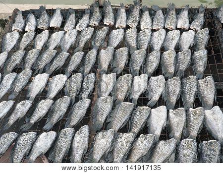 Dried fish expose to sun, Food image