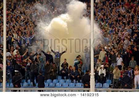 stadium, fans