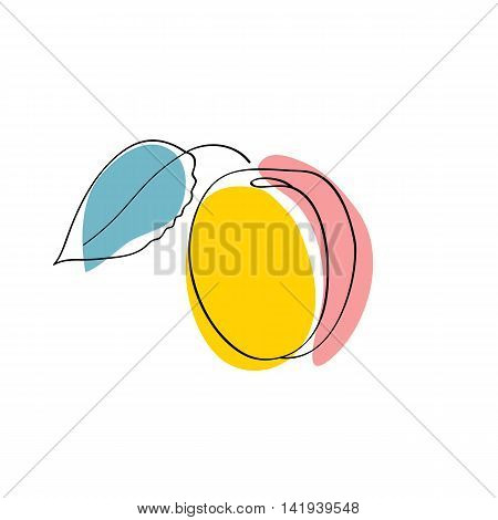 Vector illustration Yellow and pink apricot with leaf