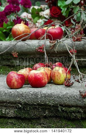 red apples and rowanberry lies on the pavement