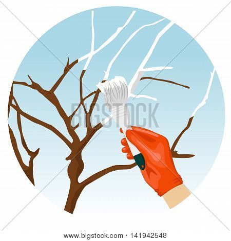Whitewashing of trees in the spring in the garden