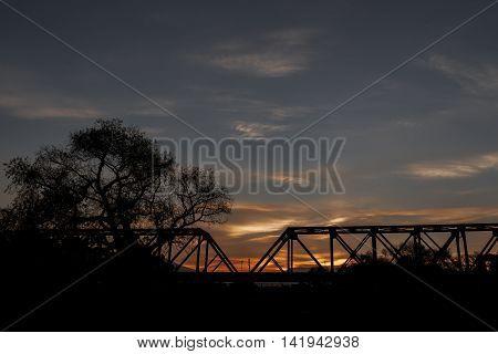 railway bridge and tree both in backlight on orange sunset