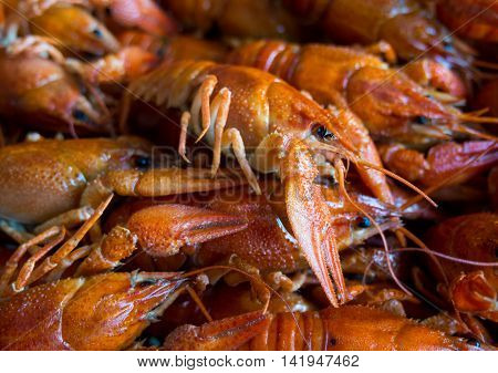 Boiled crawfish in a large number of lay slide