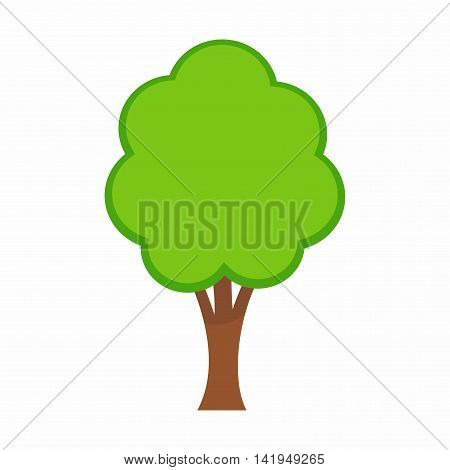 A tree is a perennial plant with an elongated stem, or trunk, supporting branches and leaves in most species.
