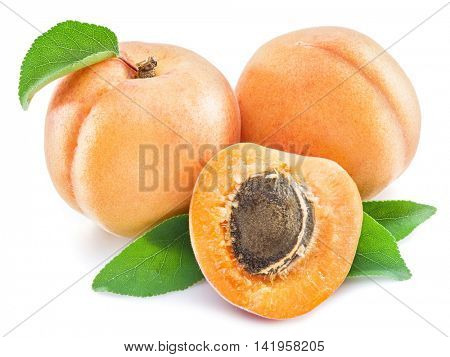 Apricot fruits and its cross-section on the white background.