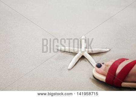 White finger starfish under a human foot over sand beach. Environmental protection concept.