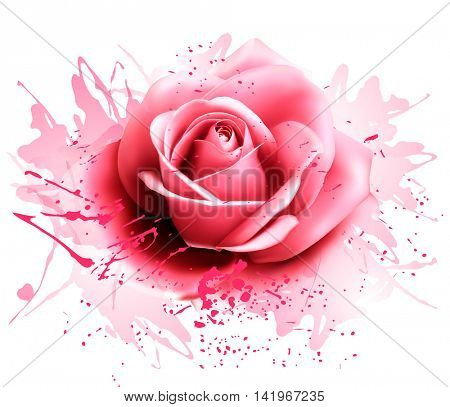 Greeting card with pink rose. Vector