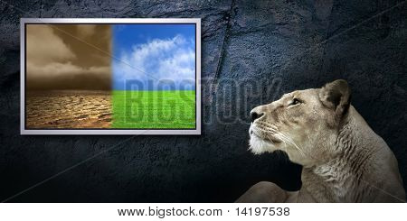 grunge background with landscape on monitor and lion