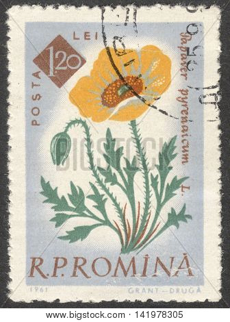 MOSCOW RUSSIA - CIRCA MAY 2016: a post stamp printed in ROMANIA shows Papaver pyrenaicum flower the series