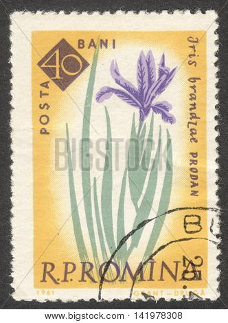 MOSCOW RUSSIA - CIRCA MAY 2016: a post stamp printed in ROMANIA shows Iris brandzae flower the series