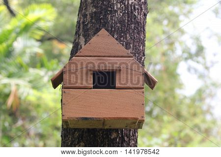 Replica house of squirrel animal on a tree in the garden Concept to residence.