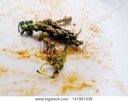 Unripe Black Pepper In Disk, Finish Eating. Pepper's Popular Food Condiment Thailand. Still Life Sty
