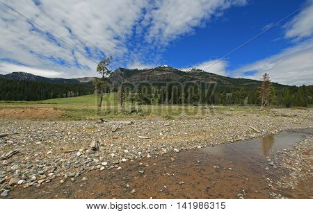 Pebble Creek under stretched out cumulus clouds at the east end of the Lamar Valley in Yellowstone National Park in Wyoming USA