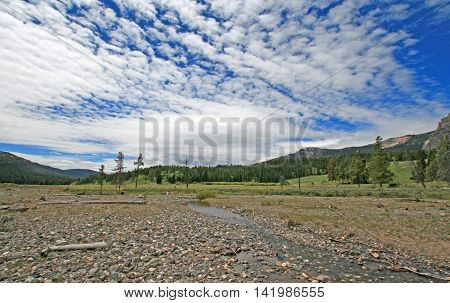 Pebble Creek under gauzy cumulus clouds at the east end of the Lamar Valley in Yellowstone National Park in Wyoming USA